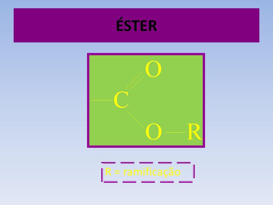 ÉSTER R = ramificação