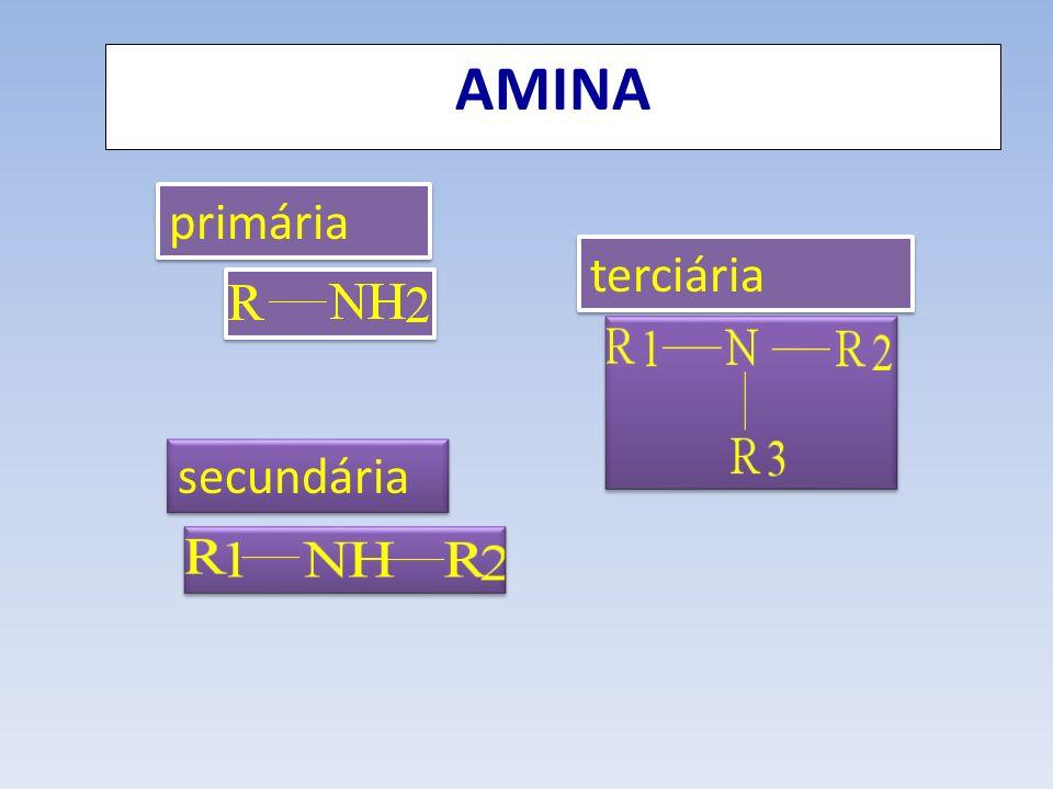 AMINA primária terciária secundária