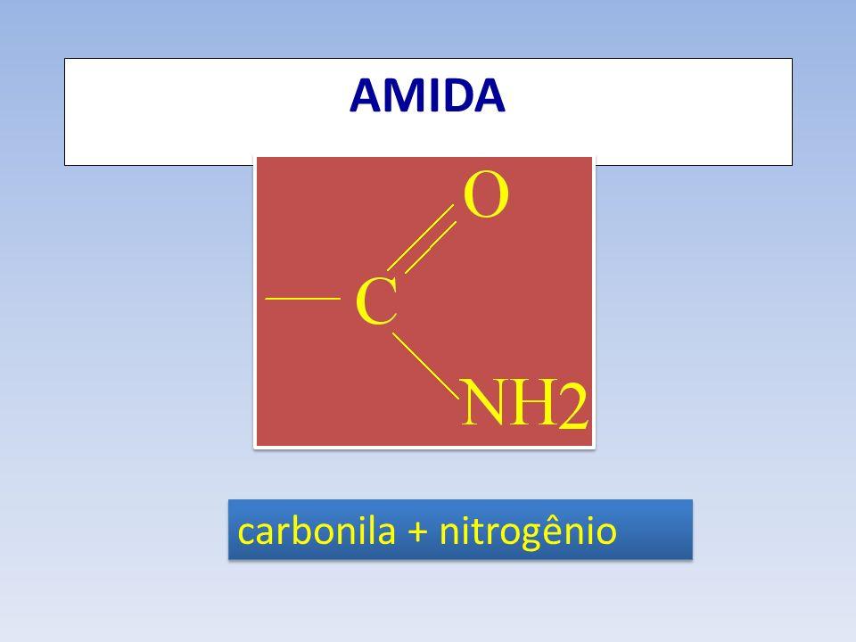 AMIDA carbonila + nitrogênio