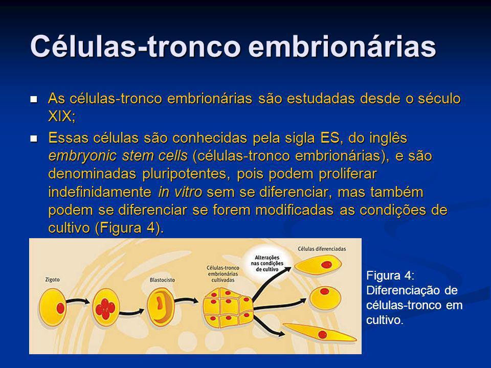 Células-tronco embrionárias