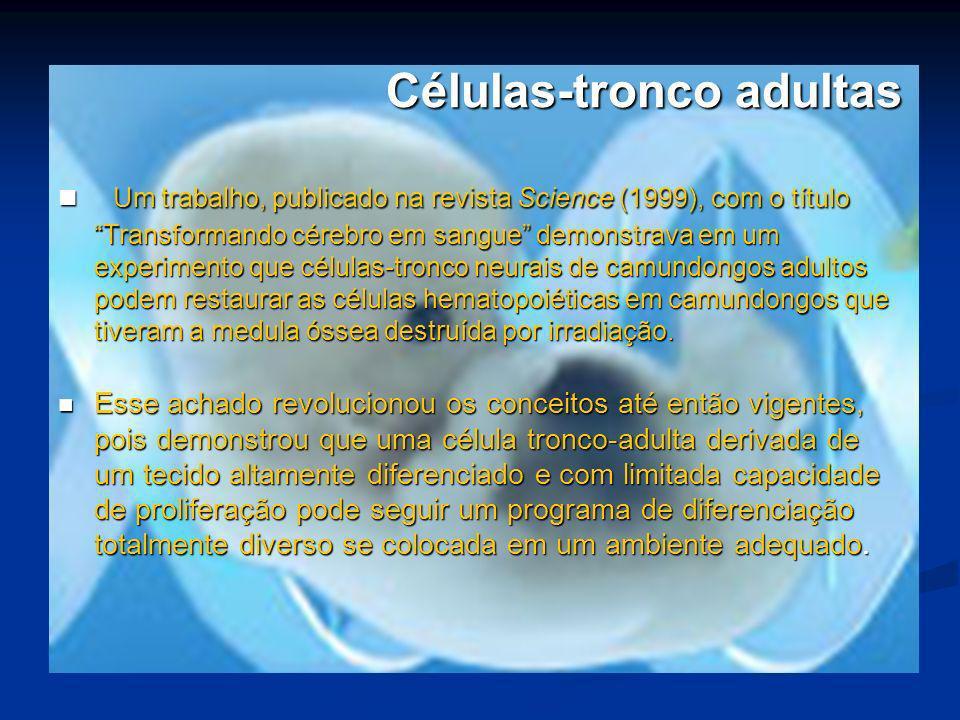 Células-tronco adultas