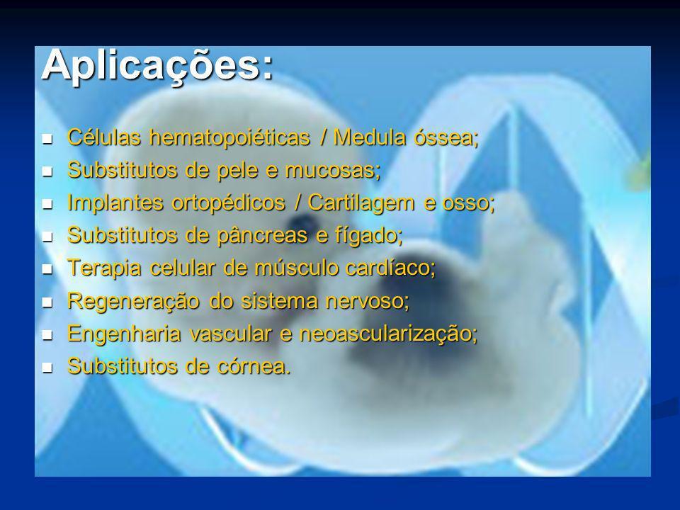 Aplicações: Células hematopoiéticas / Medula óssea;