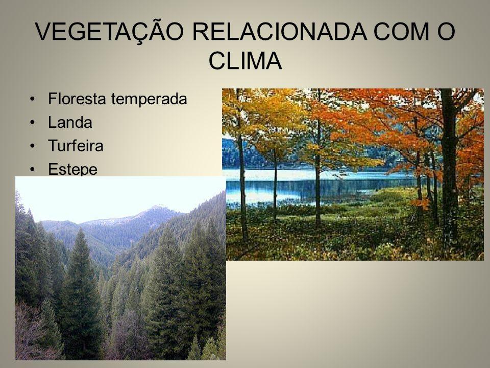 VEGETAÇÃO RELACIONADA COM O CLIMA