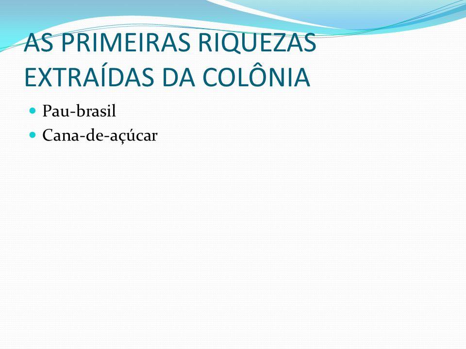 AS PRIMEIRAS RIQUEZAS EXTRAÍDAS DA COLÔNIA