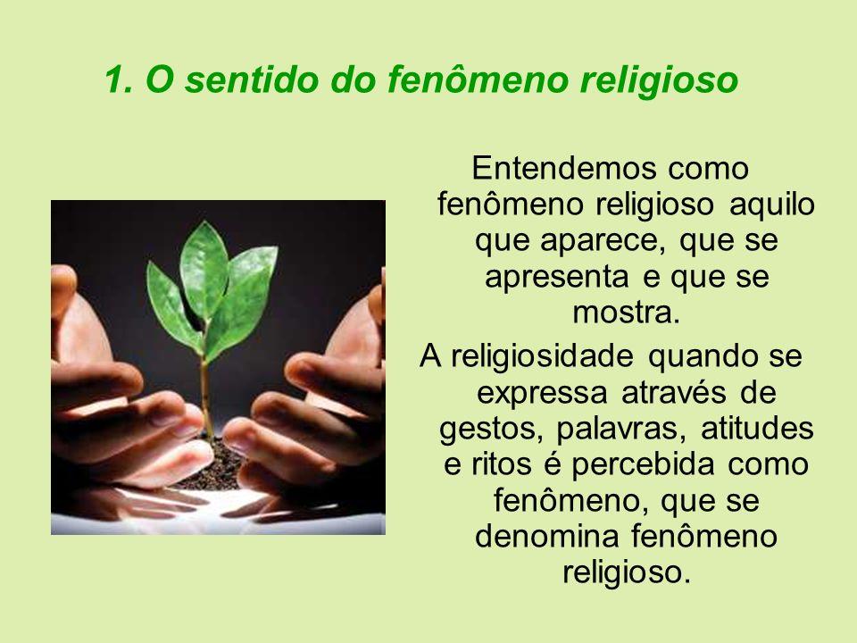 1. O sentido do fenômeno religioso