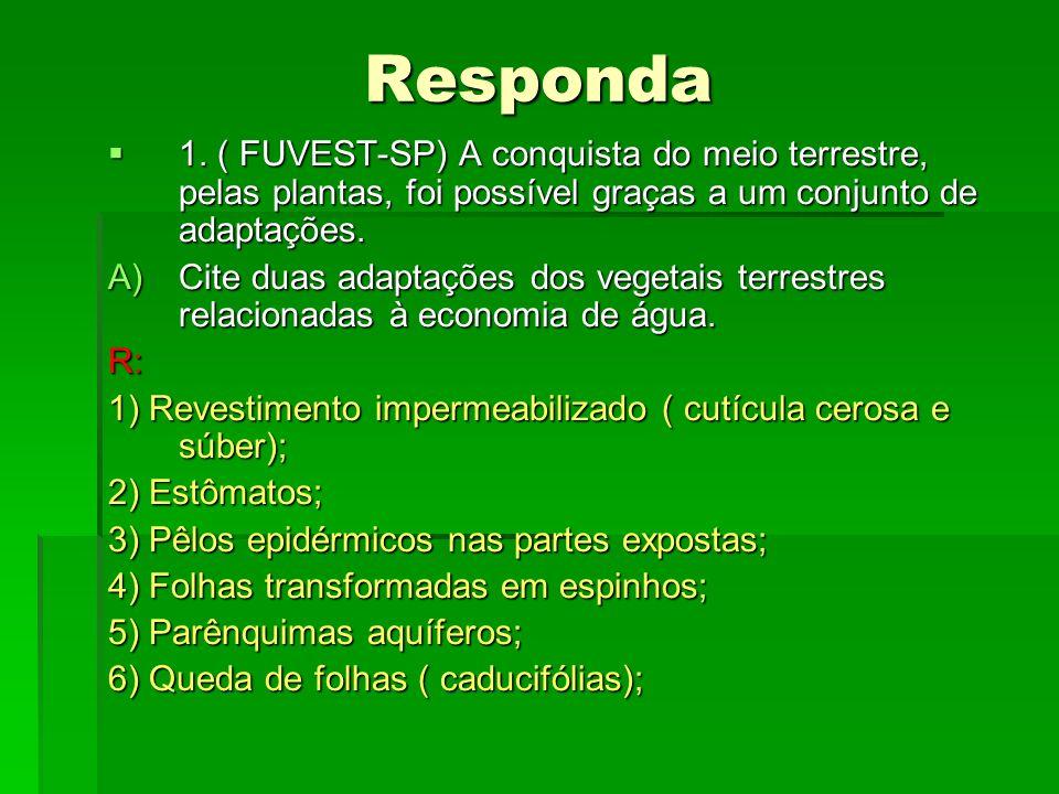 Responda1. ( FUVEST-SP) A conquista do meio terrestre, pelas plantas, foi possível graças a um conjunto de adaptações.