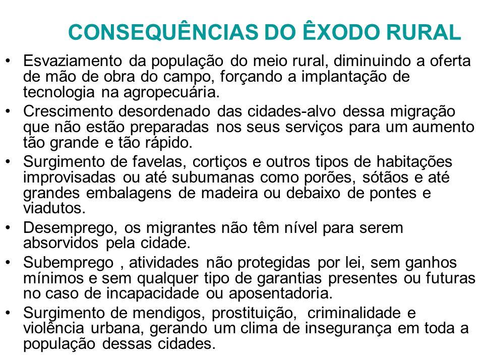 CONSEQUÊNCIAS DO ÊXODO RURAL