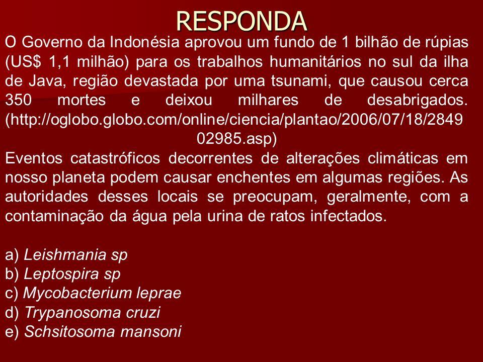 RESPONDA