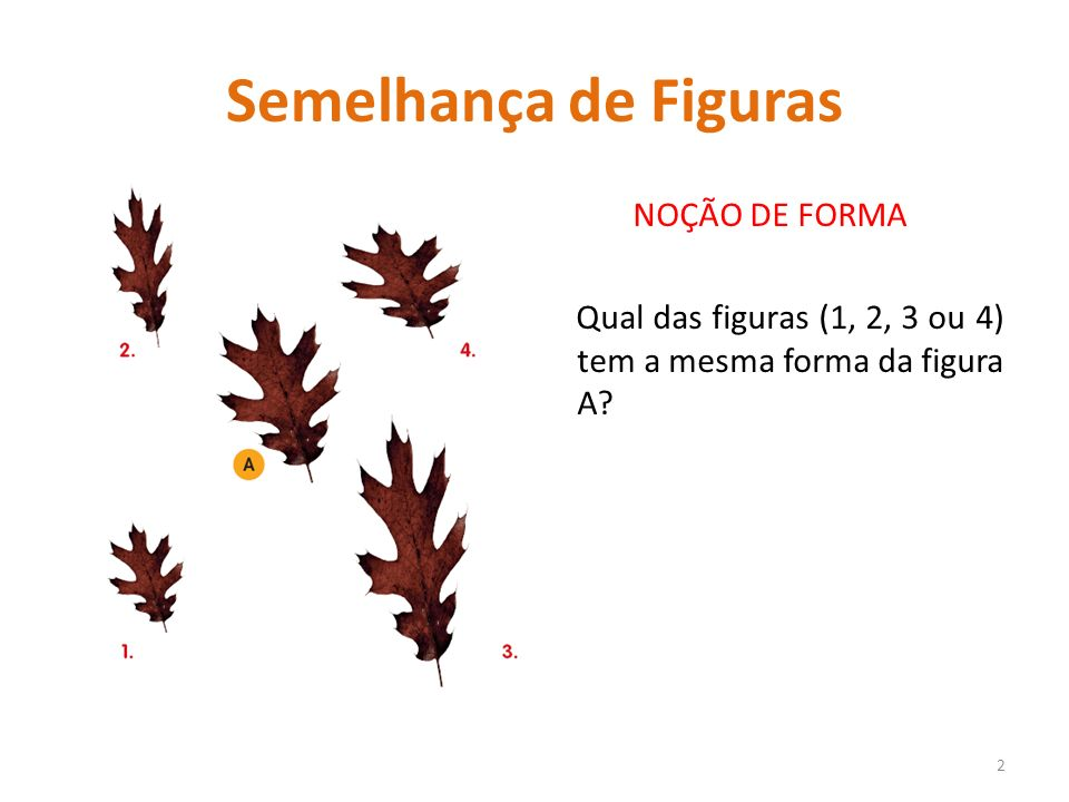 Semelhança de Figuras NOÇÃO DE FORMA Qual das figuras (1, 2, 3 ou 4) tem a mesma forma da figura A