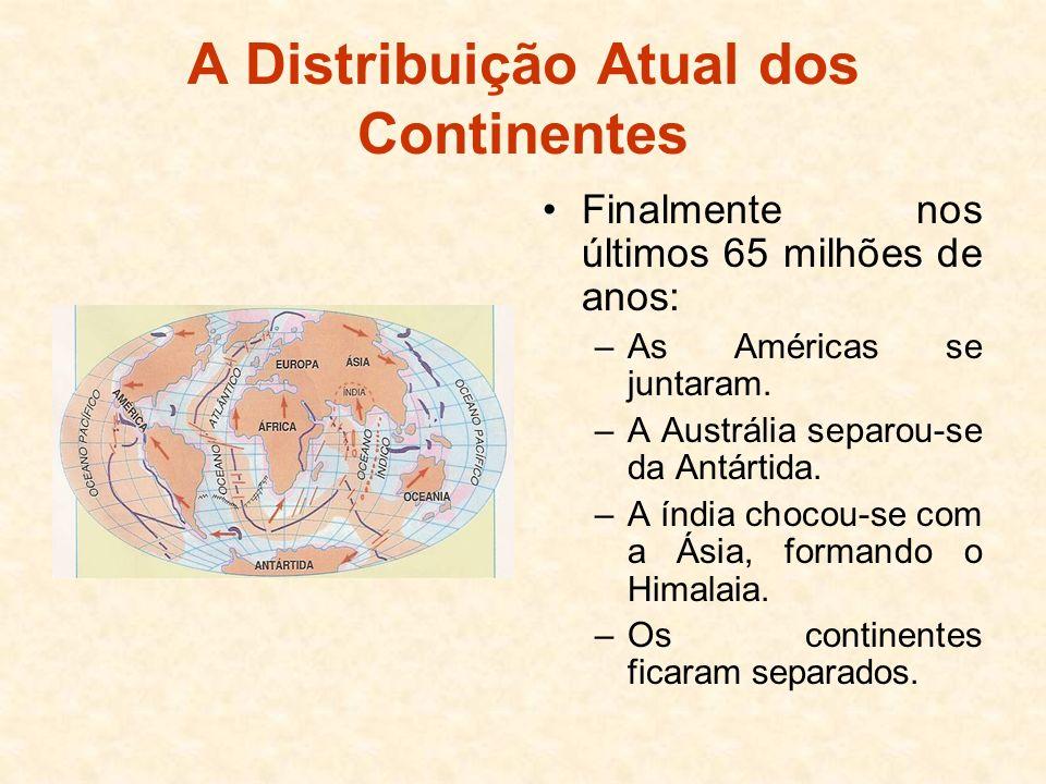 A Distribuição Atual dos Continentes