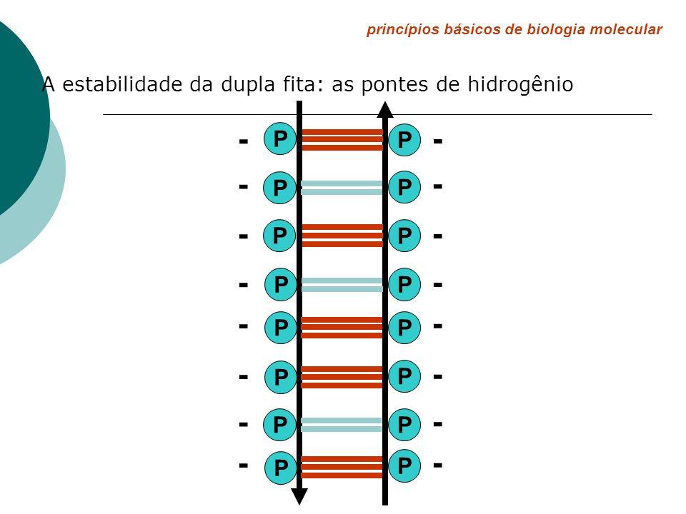 princípios básicos de biologia molecular