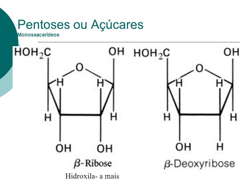 Pentoses ou Açúcares Monossacarídeos