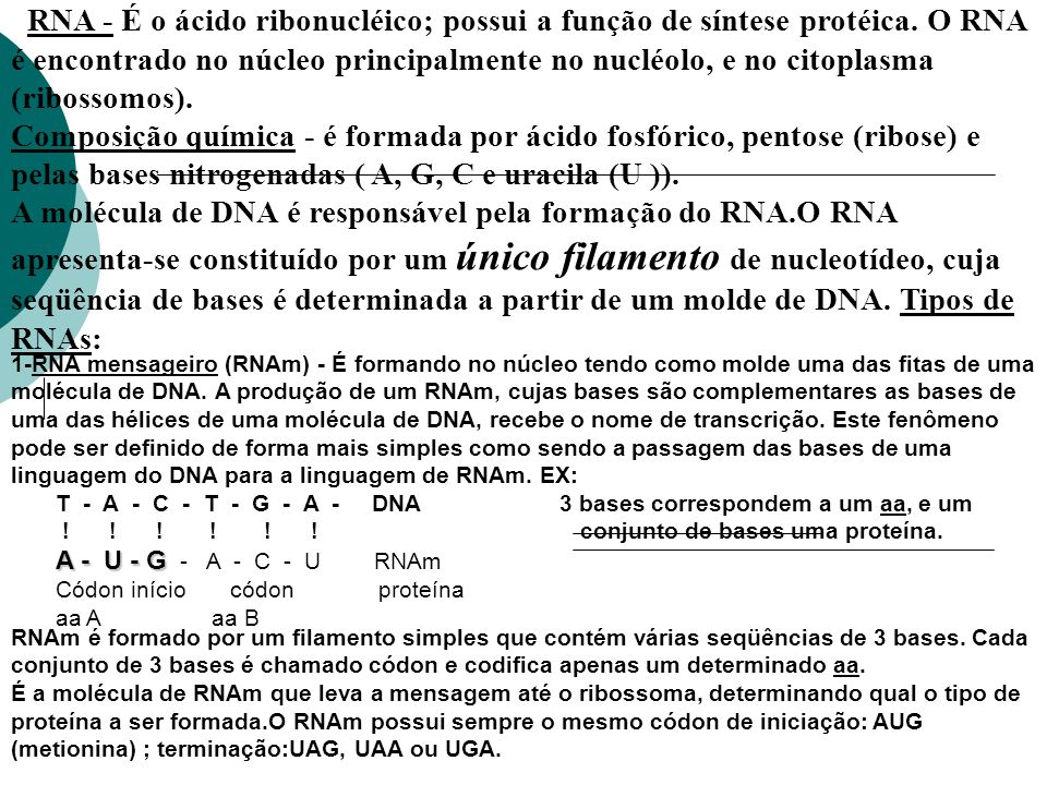 RNA - É o ácido ribonucléico; possui a função de síntese protéica