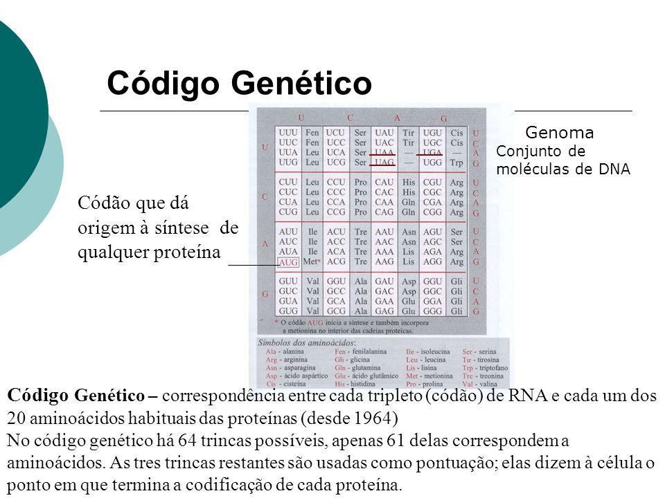 Código Genético Códão que dá origem à síntese de qualquer proteína