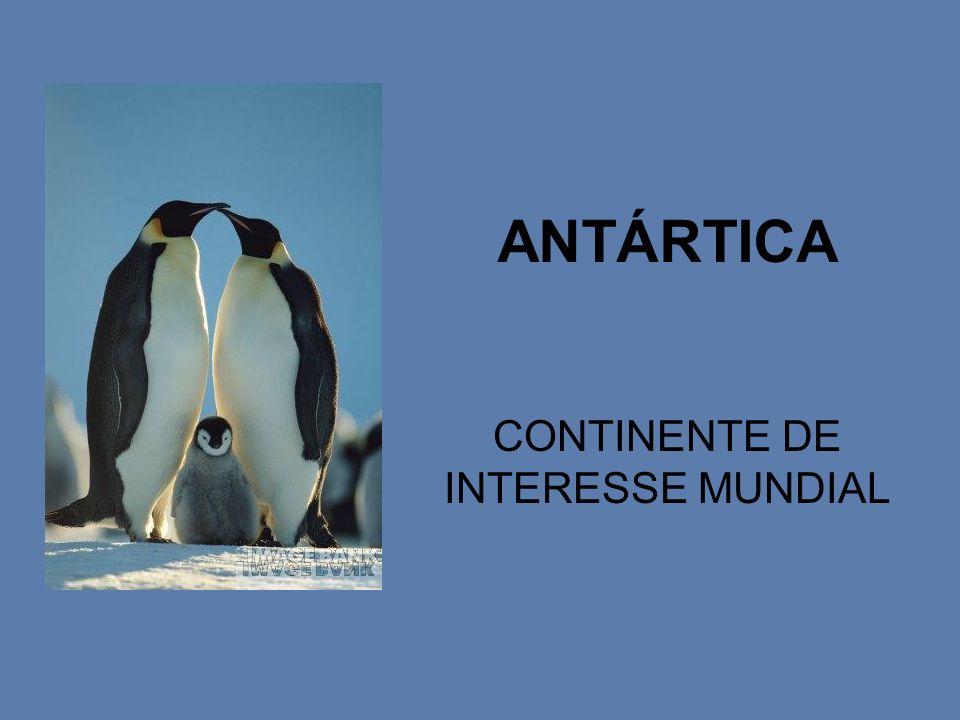 CONTINENTE DE INTERESSE MUNDIAL