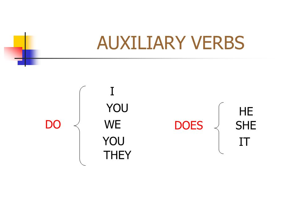 AUXILIARY VERBSI. YOU. DO WE. YOU THEY. HE DOES SHE.