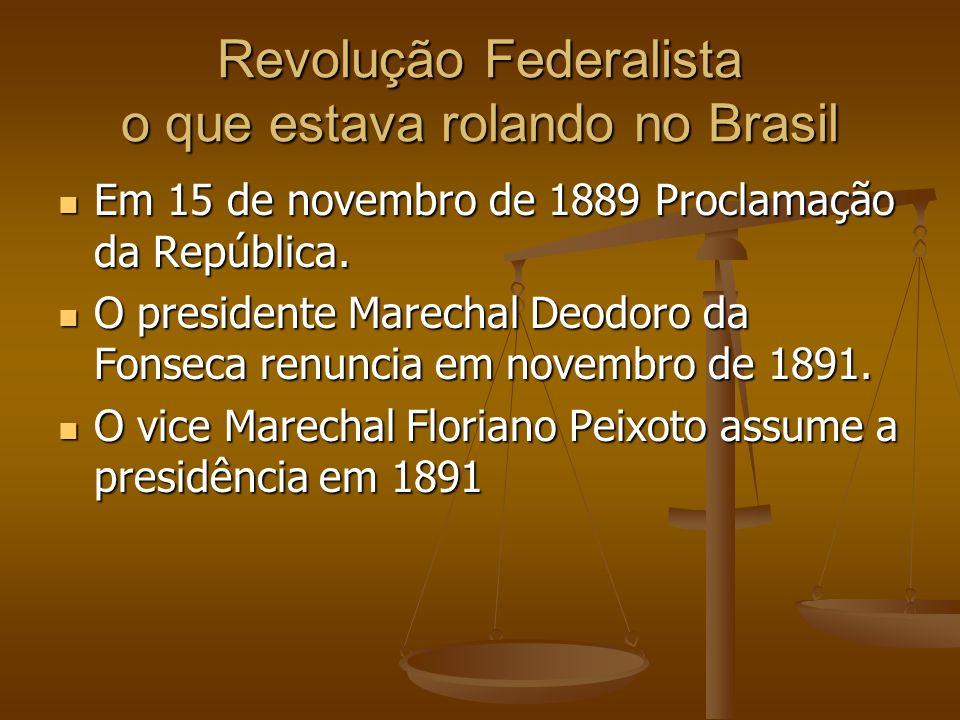Revolução Federalista o que estava rolando no Brasil