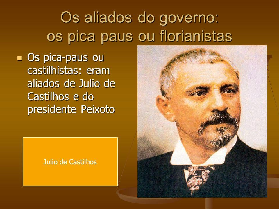 Os aliados do governo: os pica paus ou florianistas