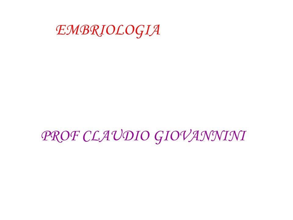 PROF CLAUDIO GIOVANNINI
