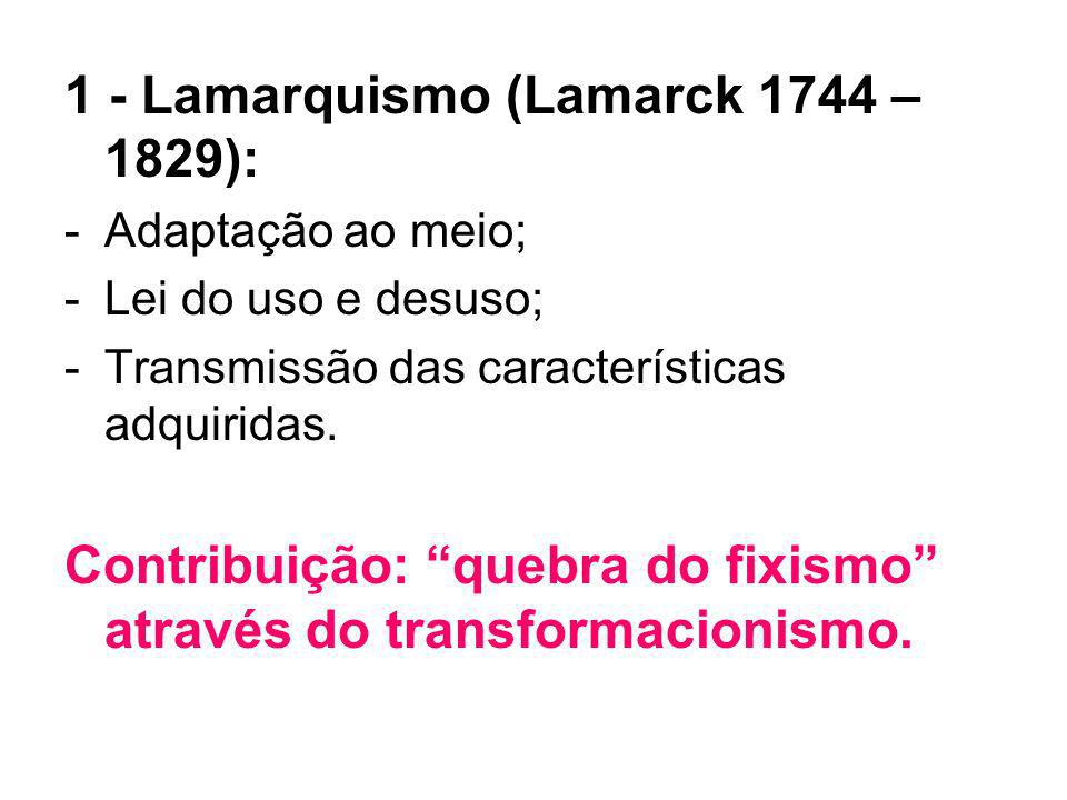 1 - Lamarquismo (Lamarck 1744 – 1829):