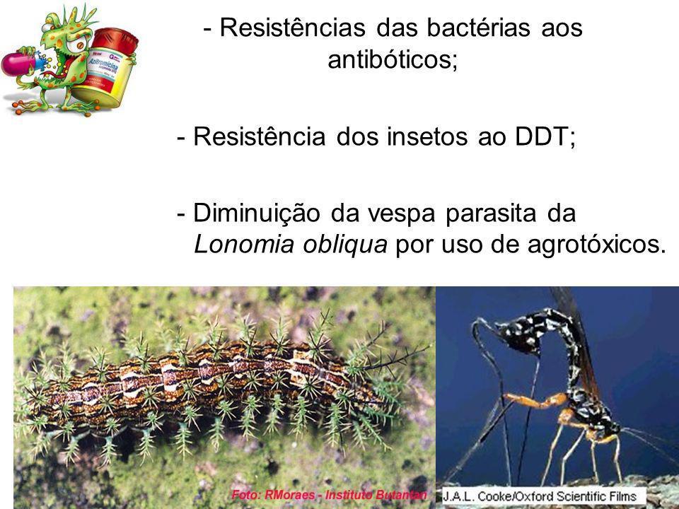 - Resistências das bactérias aos antibóticos;