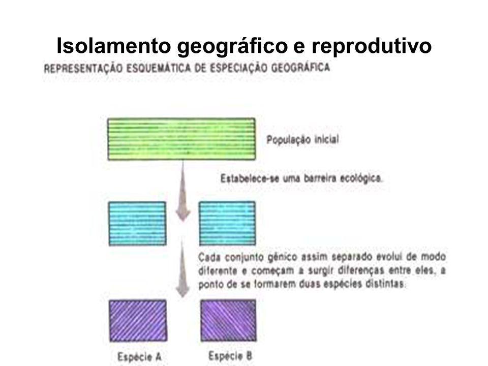 Isolamento geográfico e reprodutivo