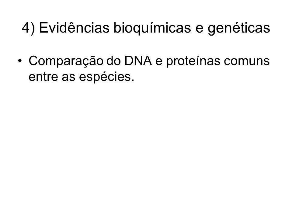 4) Evidências bioquímicas e genéticas