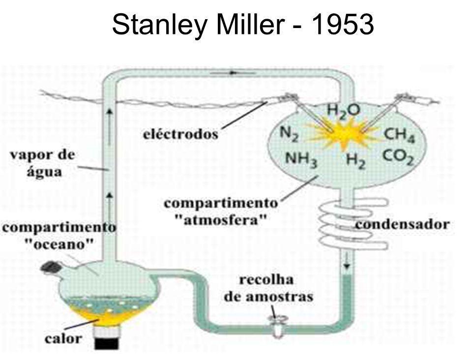 Stanley Miller - 1953