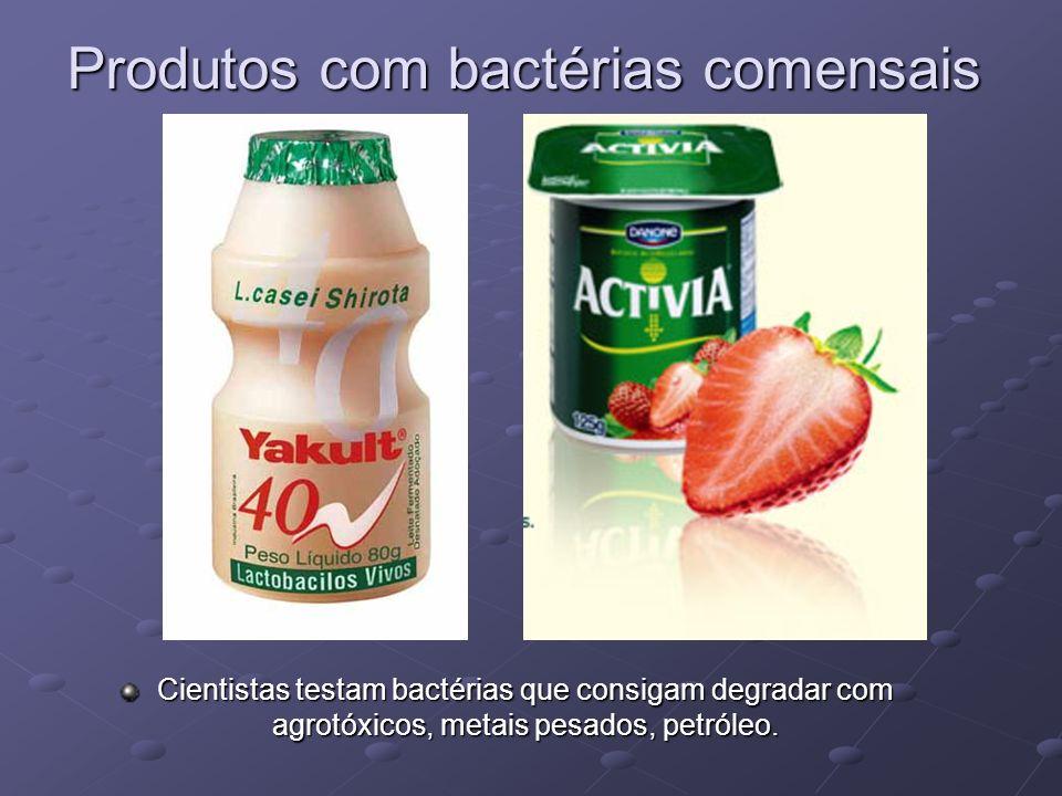 Produtos com bactérias comensais