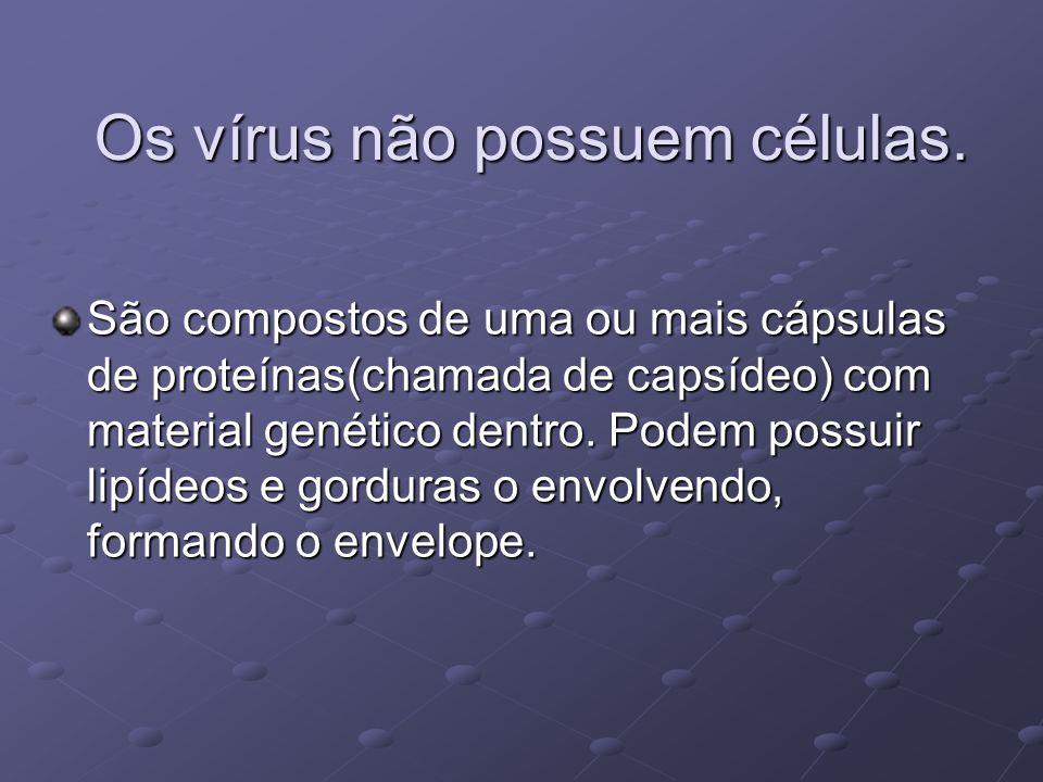 Os vírus não possuem células.