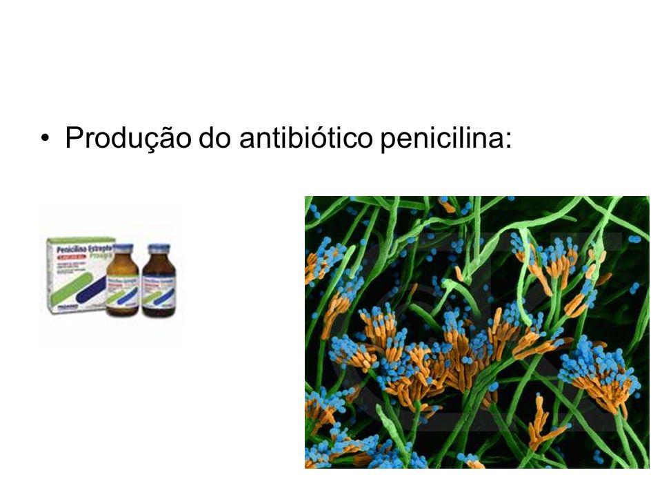 Produção do antibiótico penicilina: