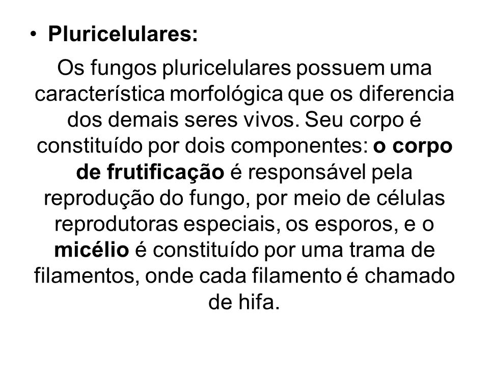 Pluricelulares: