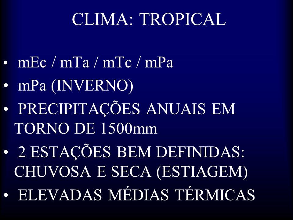 CLIMA: TROPICAL mPa (INVERNO) PRECIPITAÇÕES ANUAIS EM TORNO DE 1500mm