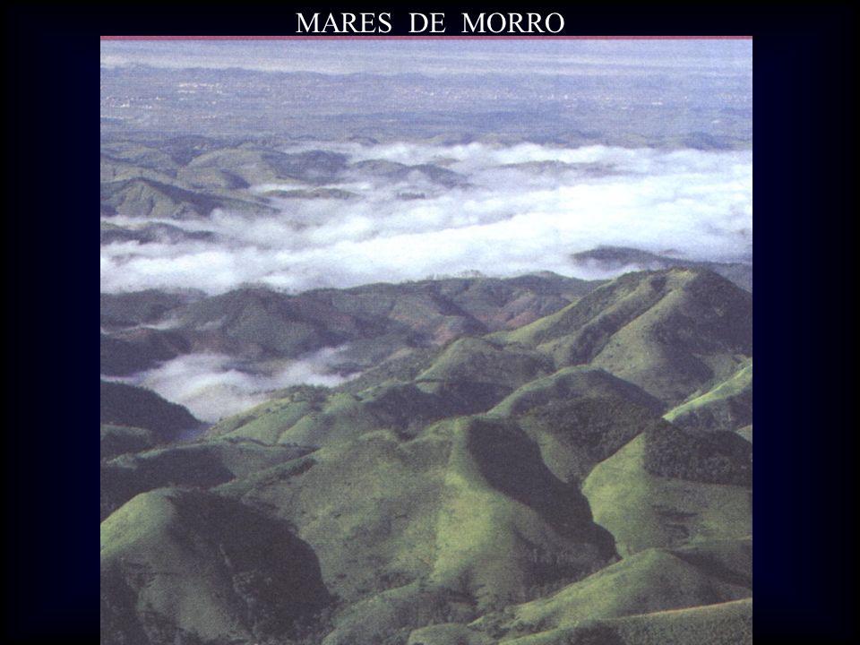 MARES DE MORRO