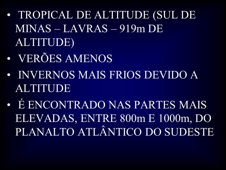 TROPICAL DE ALTITUDE (SUL DE MINAS – LAVRAS – 919m DE ALTITUDE)