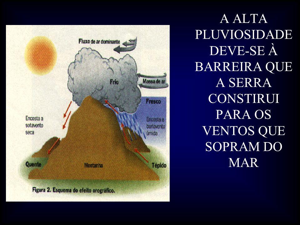 A ALTA PLUVIOSIDADE DEVE-SE À BARREIRA QUE A SERRA CONSTIRUI PARA OS VENTOS QUE SOPRAM DO MAR