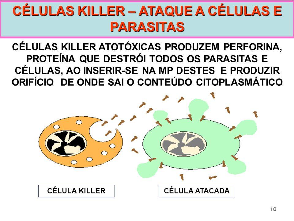 CÉLULAS KILLER – ATAQUE A CÉLULAS E PARASITAS