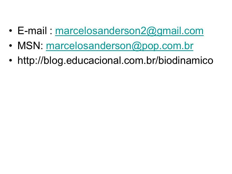 E-mail : marcelosanderson2@gmail.com