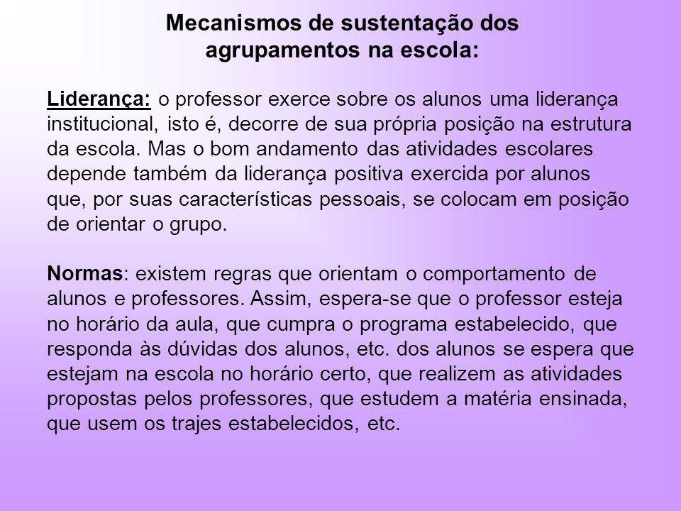 Mecanismos de sustentação dos agrupamentos na escola: