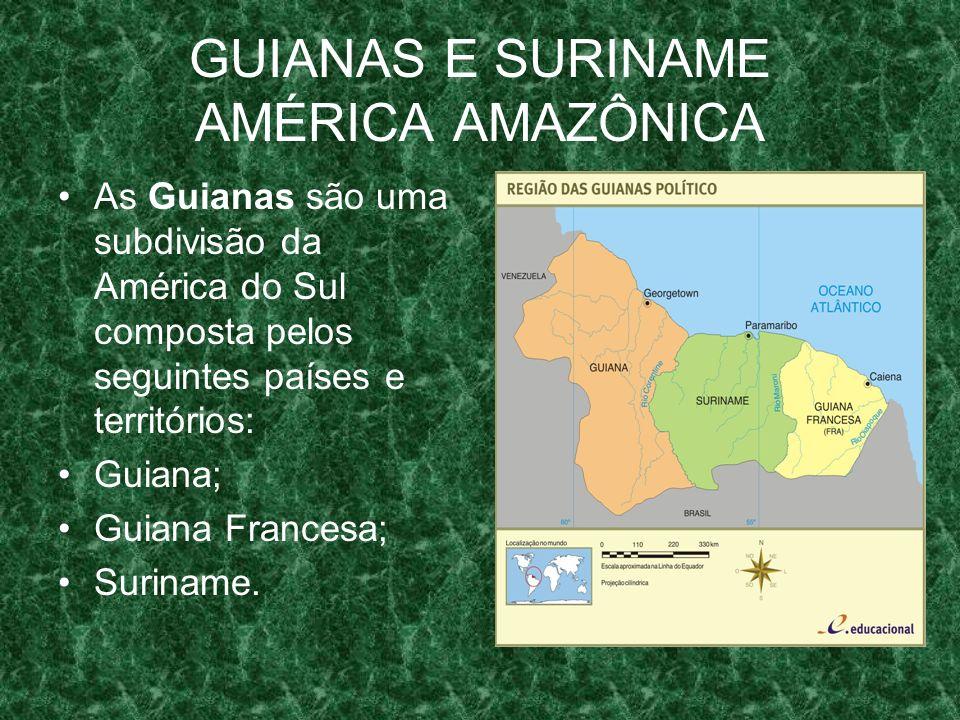 GUIANAS E SURINAME AMÉRICA AMAZÔNICA