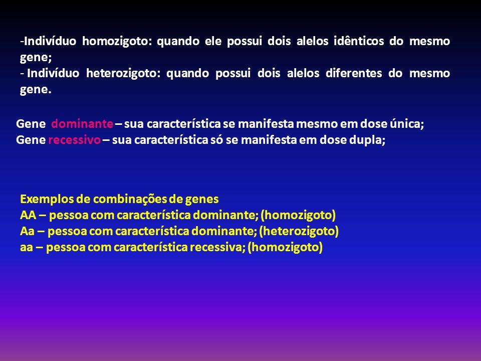Indivíduo homozigoto: quando ele possui dois alelos idênticos do mesmo gene;