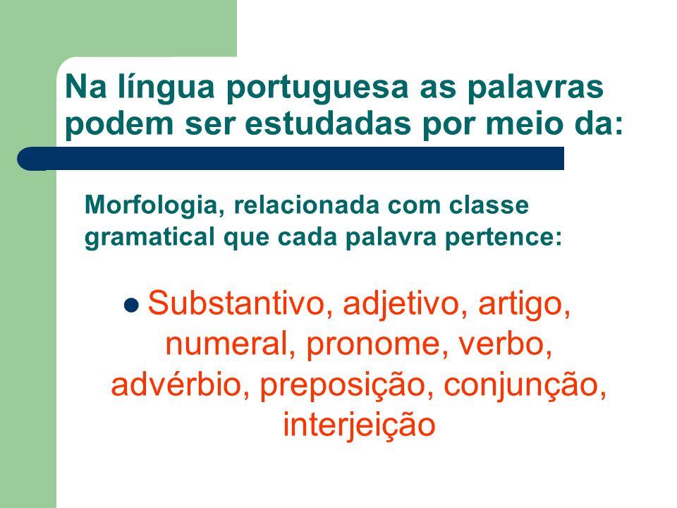 Na língua portuguesa as palavras podem ser estudadas por meio da: