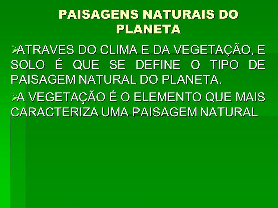 PAISAGENS NATURAIS DO PLANETA