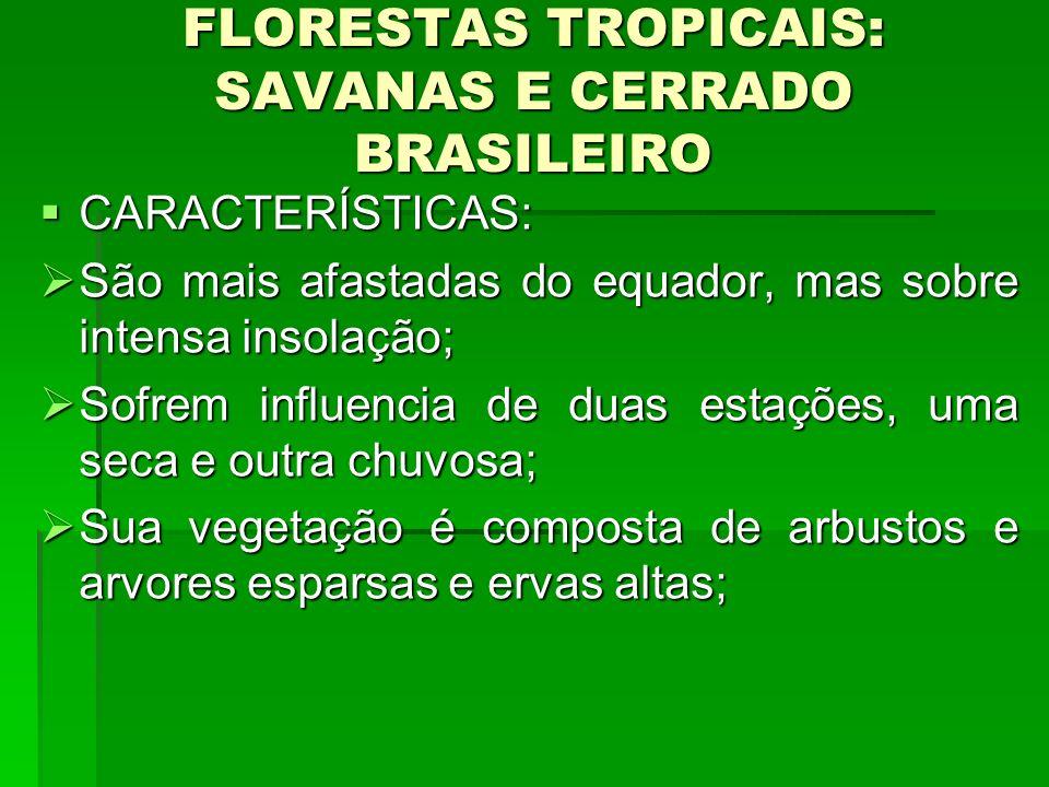 FLORESTAS TROPICAIS: SAVANAS E CERRADO BRASILEIRO