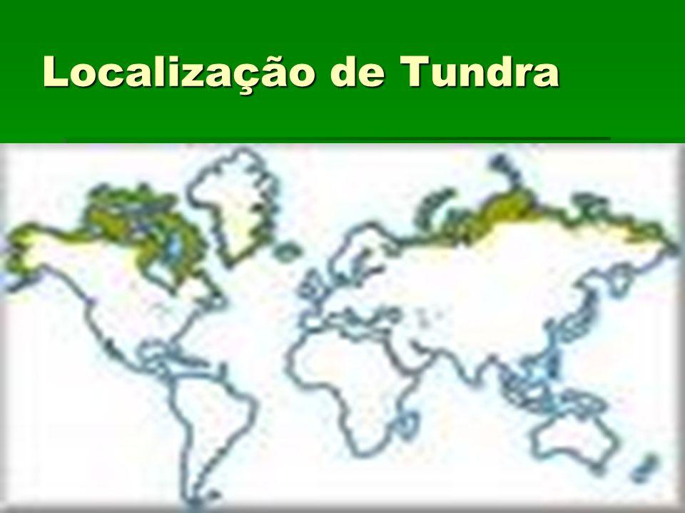 Localização de Tundra