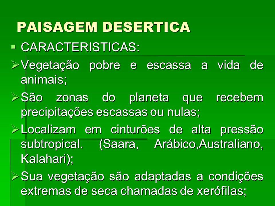 PAISAGEM DESERTICA CARACTERISTICAS: