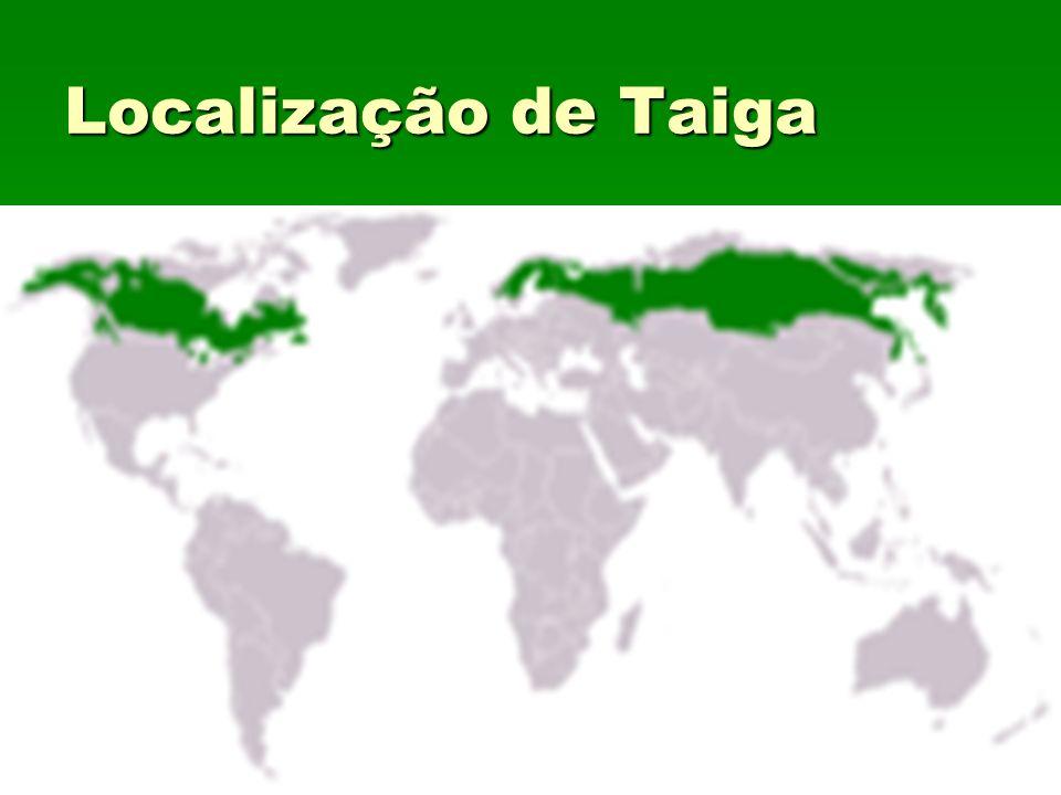 Localização de Taiga