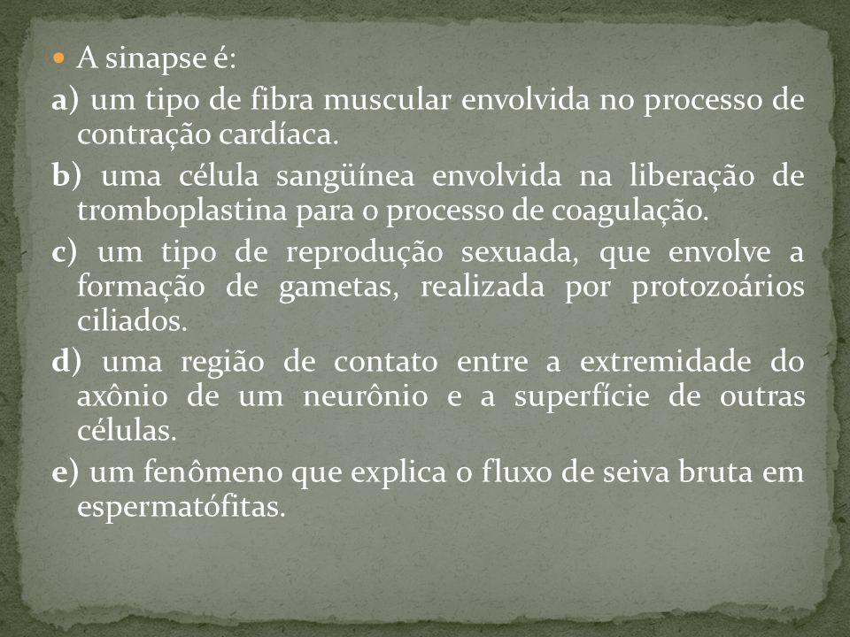 A sinapse é: a) um tipo de fibra muscular envolvida no processo de contração cardíaca.