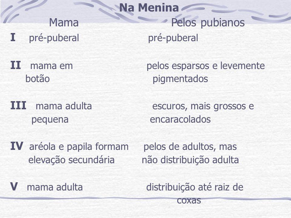 I pré-puberal pré-puberal II mama em pelos esparsos e levemente