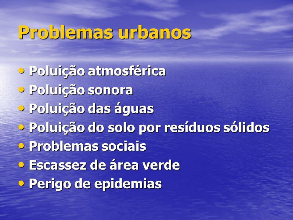 Problemas urbanos Poluição atmosférica Poluição sonora